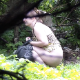 A woman shits on the ground in a secluded outdoor location and then wipes her ass. She gets the urge to poop and wipe a second time. See movies 5799, 5800 and 6009 for more in this series. Presented in 720P HD, but no audio. About 1.5 minutes.