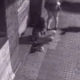 A security camera records a drunk girl squatting in an alley to take a shit while her friends watch. The drunk girl returns to the scene to pick up her turd and throw it aside. Grainy video with no audio track, but shown in 720P. Over 2.5 minutes.