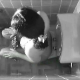 This near 8-minute video features three different voyeur type scenes of seemingly unsuspecting women pooping - seen from an overhead hidden camera. Clear audio reveals all the expected sounds. The poop is also quite visible in the toilet afterwards.
