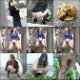 A cameraman follows many different women as they find hidden places in public to relieve themselves. Half peeing and half pooping. The abandoned messes are examined closely afterwards. About 2 hours. 1.29GB, MP4 file requires high-speed Internet.