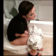 A pretty brunette girl takes an explosive, wet shit in one scene, and then takes a regular dump while sitting on a toilet in the second scene.