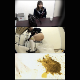 4 Japanese girls have some bad luck and get the urge to shit in the most inconvenient locations. They shit into trash cans and plastic bags, then try to discretely dispose of their waste. Presented in 720P HD. 722MB, MP4 file. About 59 minutes.