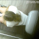 A hidden camera mounted in the ceiling of a public restroom records a girl taking a shit while sitting on a toilet and wiping her ass. Finished product fully visible when she wipes and stands up. Over a minute.