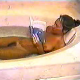 "Risque Renee, a Florida girl known for her amazing videos from the 90s, is seen here farting repeatedly in a bath tub for 7 minutes. This is actually pretty funny, and she laughs at the different ""fromp"" bubbly sounds that she makes!"