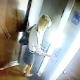 A security camera in an elevator captures a blonde girl desperately having to poop while waiting to get to her floor. She ends up shitting on the floor as the security guards laugh. Another woman enters the elevator and smells the shit. Over 2 minutes.