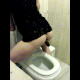 A brunette woman takes a shit into a toilet while standing, and then wipes her ass. Final product is shown at the end.