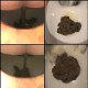 A woman takes shits into a toilet as seen from the edge of a wooden toilet seat in 9 scenes. Over 18 minutes.